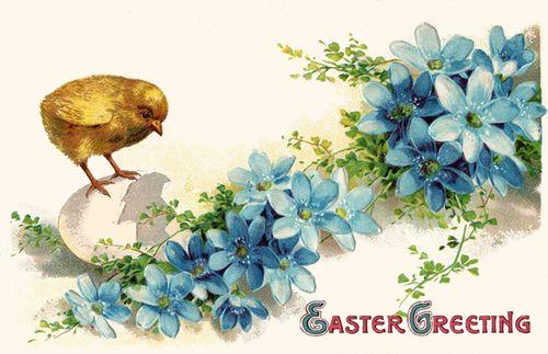Easterchick.jpg