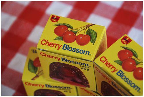 Cherryblossom4