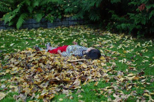 Leaf.nap