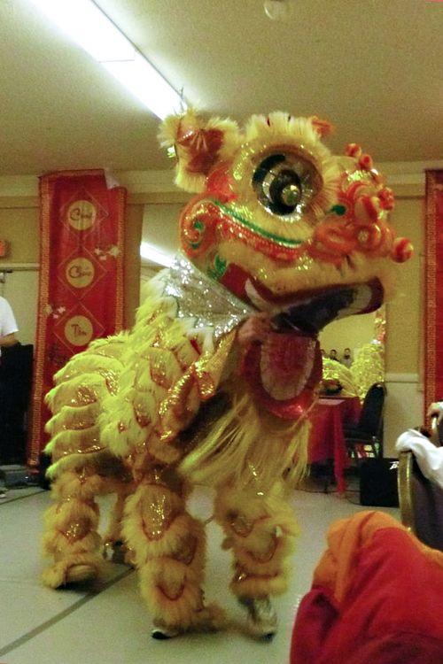 Lion.dance