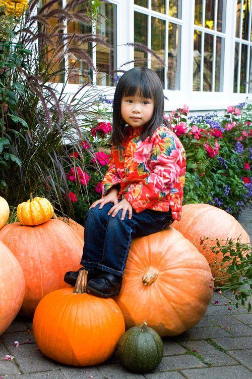 Pretty.pumpkin